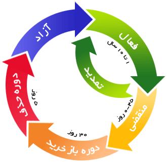 چرخه ی حیات نام دامین